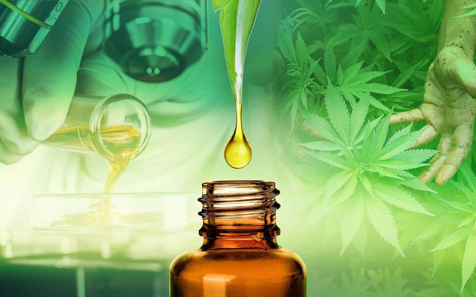 What is CBD Oil and how does it work?  Benefits and uses of CBD oil