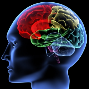 Healthier brains with uridine
