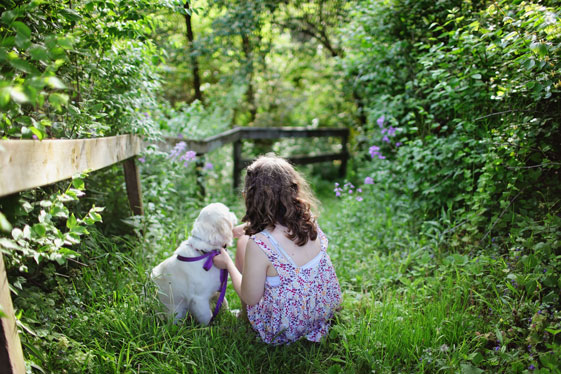 Pets and your health: six ways in which a pet can improve your health