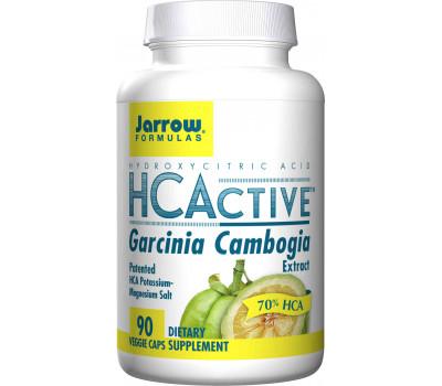 HCActive Garcinia Cambogia 90 caps - hydroxycitroenzuur | Jarrow Formulas